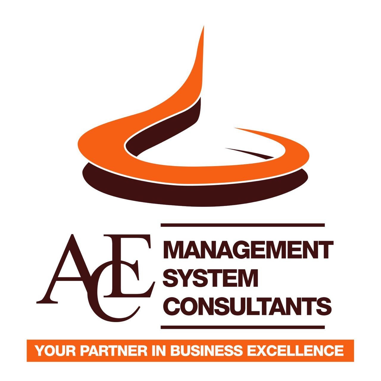 Ace Management System Consultants